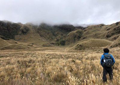 Alpine_tundra_grass_hiker